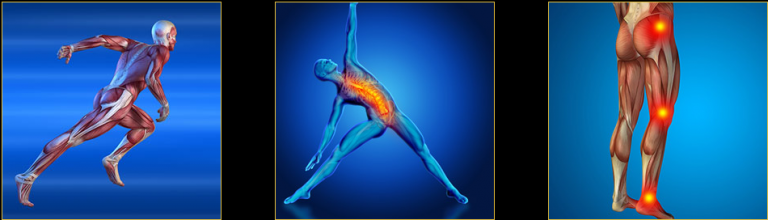 Unlock Your Hip Flexors exercises